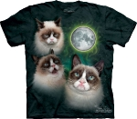 Футболка с 3D эффектом The Mountain Three Grumpy Cat Moon
