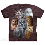 Футболка с 3D эффектом The Mountain Owls